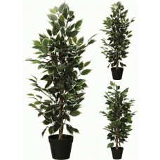 Искусственное растение Альта фикус